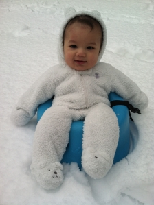Baby Pax in Winter Storm Pax