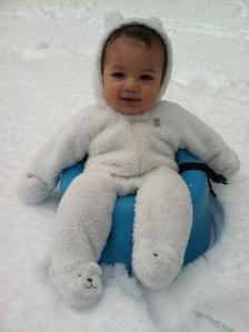 Baby Pax in Winter Storm Pax